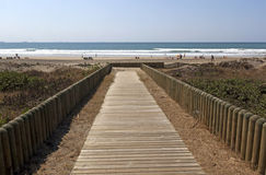 Wooden Slatted Walkway Leading onto Beach in Durban South Africa Royalty Free Stock Photos