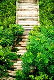 Wooden sleepers path in the garden Stock Images