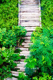 Wooden sleepers path in the garden Royalty Free Stock Photos
