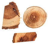 Wooden Slices and Stub. Set of 3 Slices of Wood and Stub Royalty Free Stock Photo
