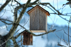 Wooden small home for the birds Royalty Free Stock Image
