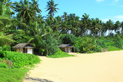 Wooden small houses on the beach in Bentota Stock Images