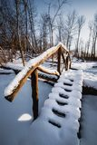 Wooden snowy bridge in the forest over the broken tree. For travelers Royalty Free Stock Photography