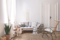 Wooden sofa with cushions in white living room interior with plant and armchair. Real photo. Concept stock images