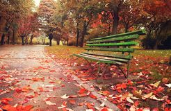 Wooden sofa in a fantasy autumn season. Artistic autumn season with wooden sofa in park and red dead leafs Stock Photo