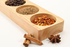 Wooden Spice Rack Filled with Spices Stock Image