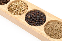 Wooden Spice Rack Filled with Spices Royalty Free Stock Images