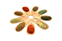 Wooden spice spoons Royalty Free Stock Images