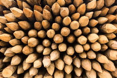 Wooden spikes background Royalty Free Stock Photography