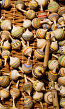 Wooden spinning tops Stock Photography