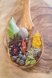 Wooden spoon with assortment of spices Stock Images