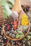 Wooden spoon with assortment of spices Royalty Free Stock Photography