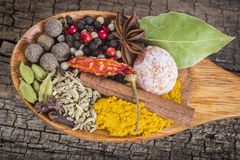 Wooden spoon with assortment of spices Royalty Free Stock Photo
