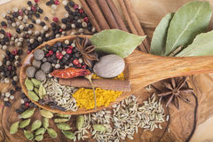 Wooden spoon with assortment of spices Royalty Free Stock Images