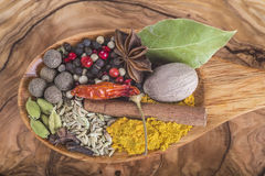 Wooden spoon with assortment of spices Stock Image