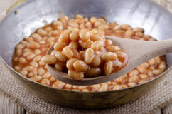 Wooden spoon with baked beans Stock Photography