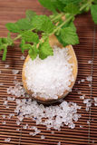Wooden spoon with bath salt Royalty Free Stock Photography