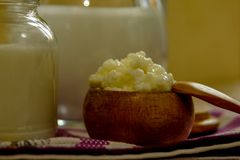 Homemade milk kefir and kefir grain - oraganic probiotic drink royalty free stock image