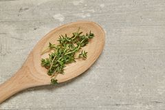 Wooden spoon with Caraway and rosemary, onion, garlic on background. Top view. Stock Image