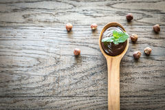 Wooden spoon of chocolate cream with fresh mint Stock Photo
