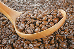 Wooden spoon coffee beans Stock Image