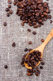 Wooden spoon with coffee beans Royalty Free Stock Photos