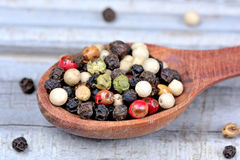 Wooden spoon with colorful peppercorns Royalty Free Stock Images