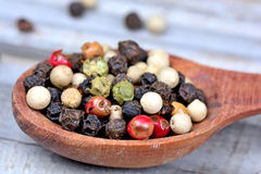 Wooden spoon with colorful peppercorns Royalty Free Stock Photos