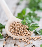 Wooden Spoon with Coriander seeds Royalty Free Stock Photos