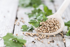 Wooden Spoon with Coriander seeds Royalty Free Stock Photography