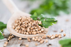 Wooden Spoon with Coriander seeds Stock Photo
