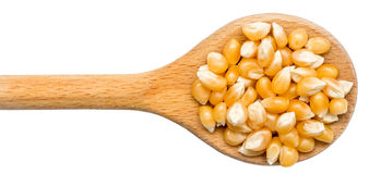 Wooden Spoon With Corn Seeds Isolated Royalty Free Stock Images