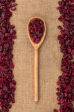 Wooden spoon with  cranberries Stock Photo