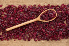 Wooden spoon with  cranberries Royalty Free Stock Photos