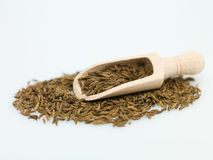 Wooden spoon cumin Stock Photography