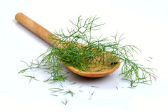 Wooden spoon with dill Stock Photos