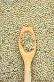 Wooden spoon and dried green lentils Royalty Free Stock Photos