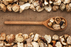 Wooden spoon with dried mushroom  lies on  sackcloth Royalty Free Stock Photography