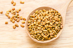 Wooden spoon with fenugreek seeds. Royalty Free Stock Photo