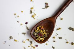 Loose Tea in Spoon Royalty Free Stock Images