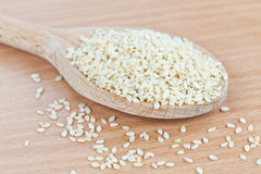 Wooden spoon filled with sesame seeds Royalty Free Stock Photo