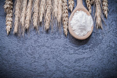 Wooden spoon with flour bunch of rye ears Royalty Free Stock Image