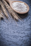 Wooden spoon with flour golden wheat ears on black background Royalty Free Stock Image