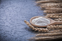 Wooden spoon flour ripe wheat ears food and drink concept Stock Image