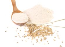 Wooden spoon with flour and wheat. Stock Image