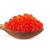 Wooden spoon full of red caviar Stock Images