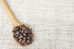 Wooden spoon full with roasted coffee beans Royalty Free Stock Image