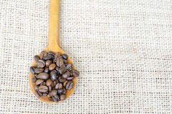 Wooden spoon full with roasted coffee beans Stock Image