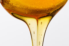 Wooden spoon honey Stock Images
