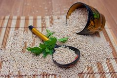 The wooden spoon and glass lie in the pearl barley with a parsley branch. The wooden spoon lies in the scattered pearl barley with a greens branch Royalty Free Stock Image
